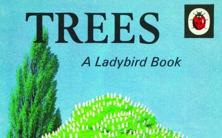 Biodiversity Net Gain: A LadybirdGuide
